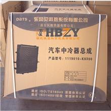 东风贝洱中冷器总成1119010-K0300/1119010-K0300