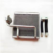 倍恩佳冷D6蒸发器芯子/D6